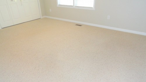 Light Carpet cleaned Before & after photos